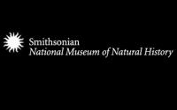 زيارة تفاعلية لمتحف التاريخ الطبيعي.