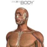 أطلس زايغوت للجسم البشري